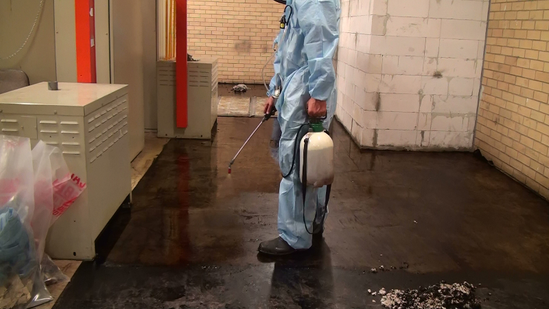 Foamshield Australia Au Project Rbh Asbestos Floor Tiles Amp Mastic Removal Foamshield